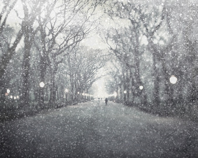 snow daze turns any photograph into a snowy scene