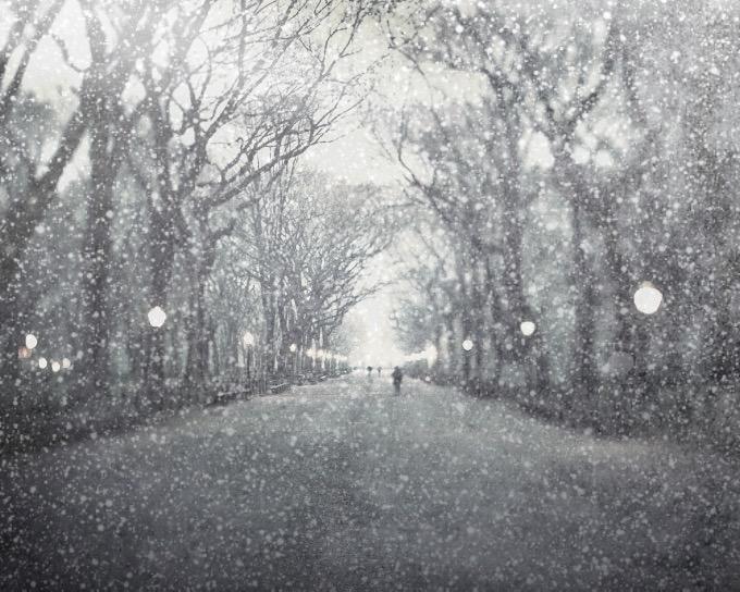 el aturdimiento de nieve convierte cualquier fotografía en una escena nevada