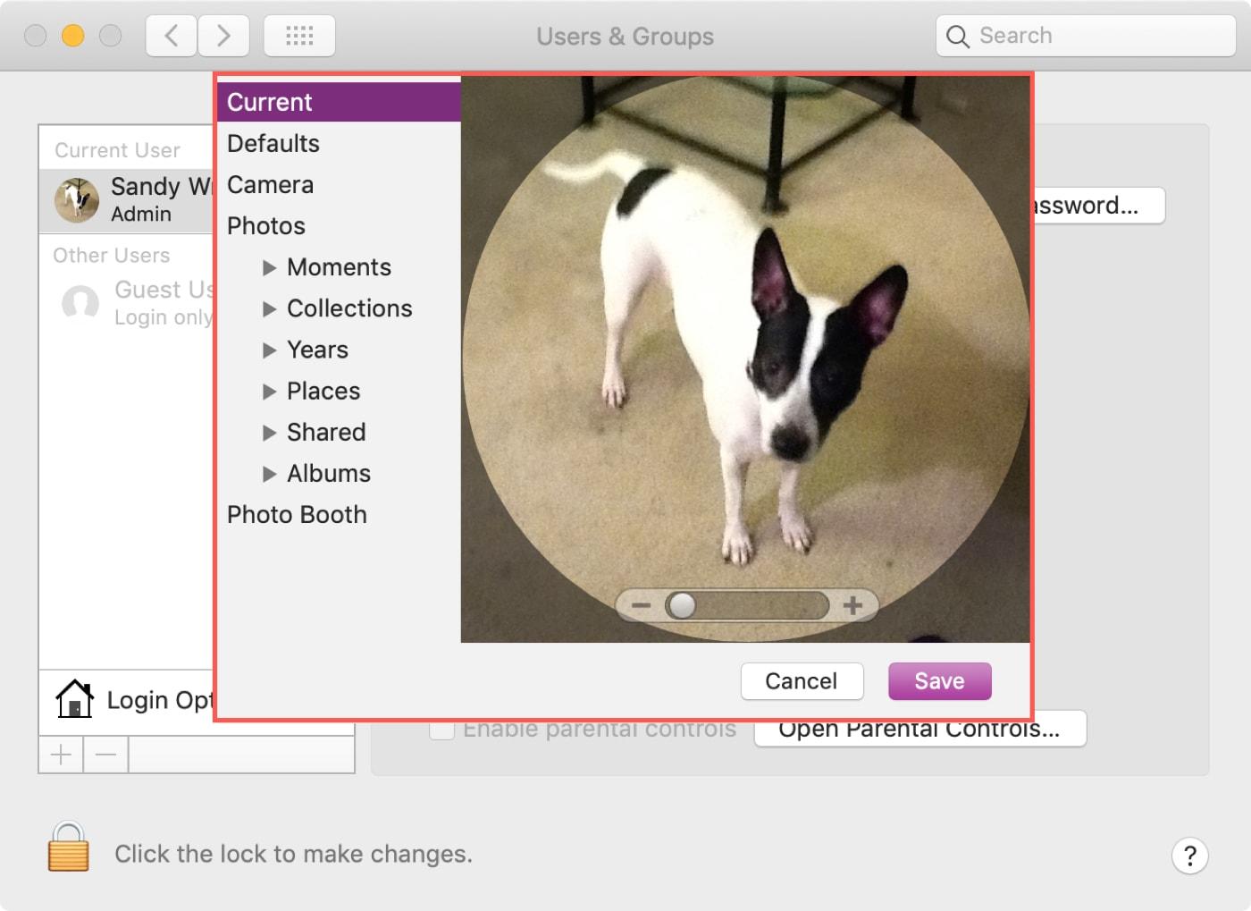 Personalizar fotos de perfil Mac