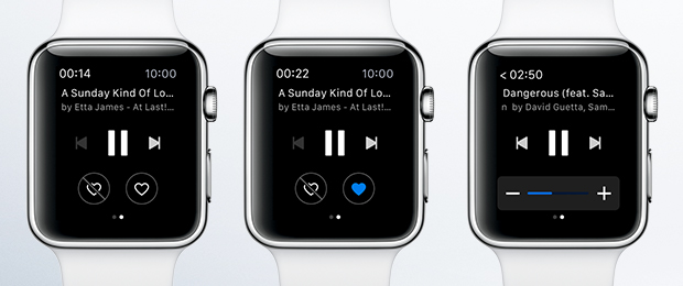Deezer for Apple Watch screenshot 001