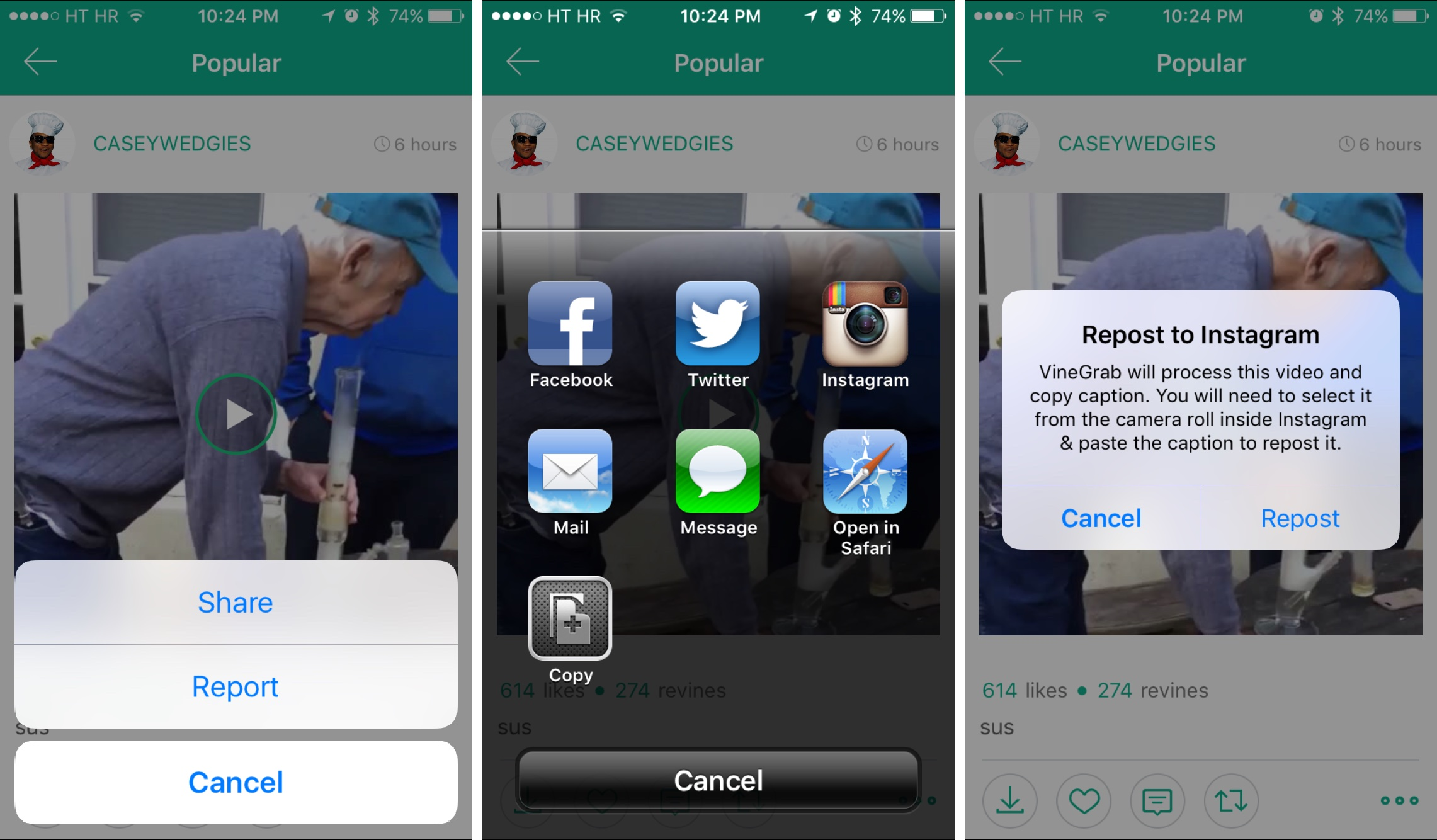 How to repost Vine videos on Instagram with VineGrab iPhone screenshot 003