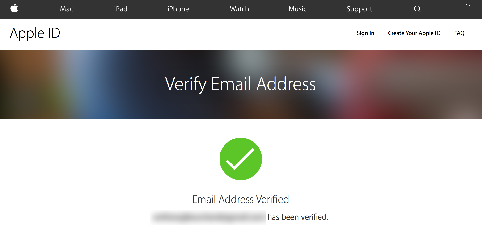 Verify Apple ID Email Success