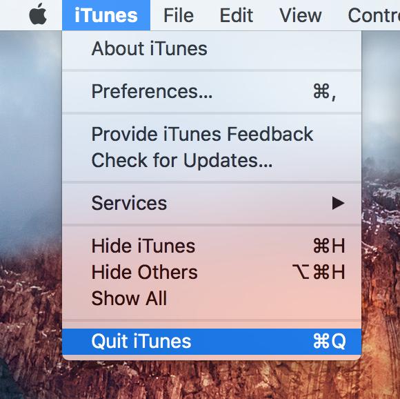 reset lockdown folder - Quit iTunes