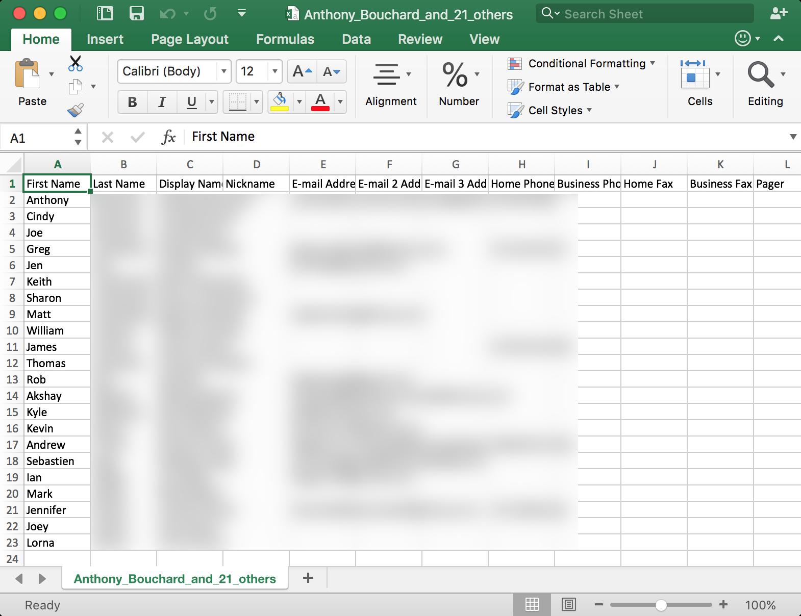 CSV File in Microsoft Excel