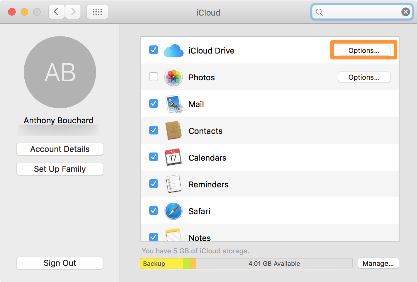 CloudClip iCloud Drive Options on Mac