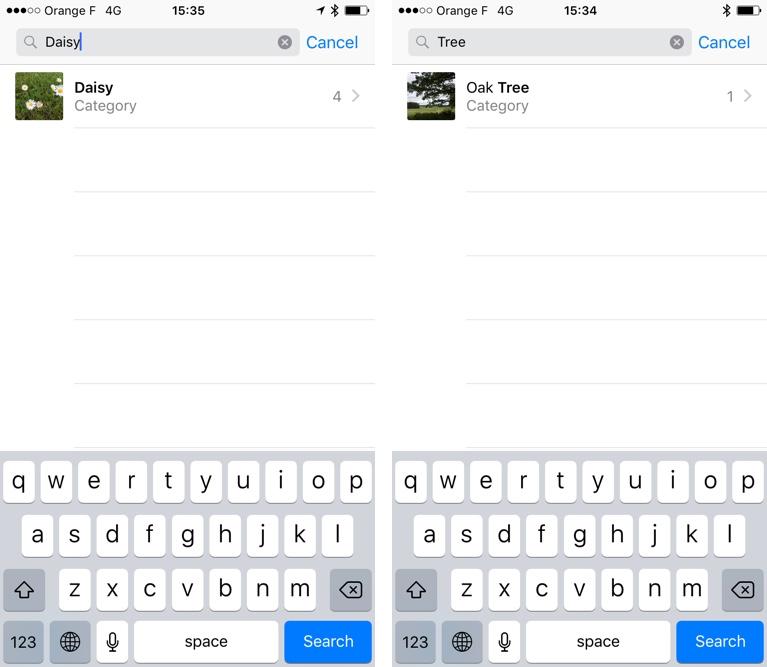 iOS 10 Photos reconoce árboles Captura de pantalla del iPhone 001