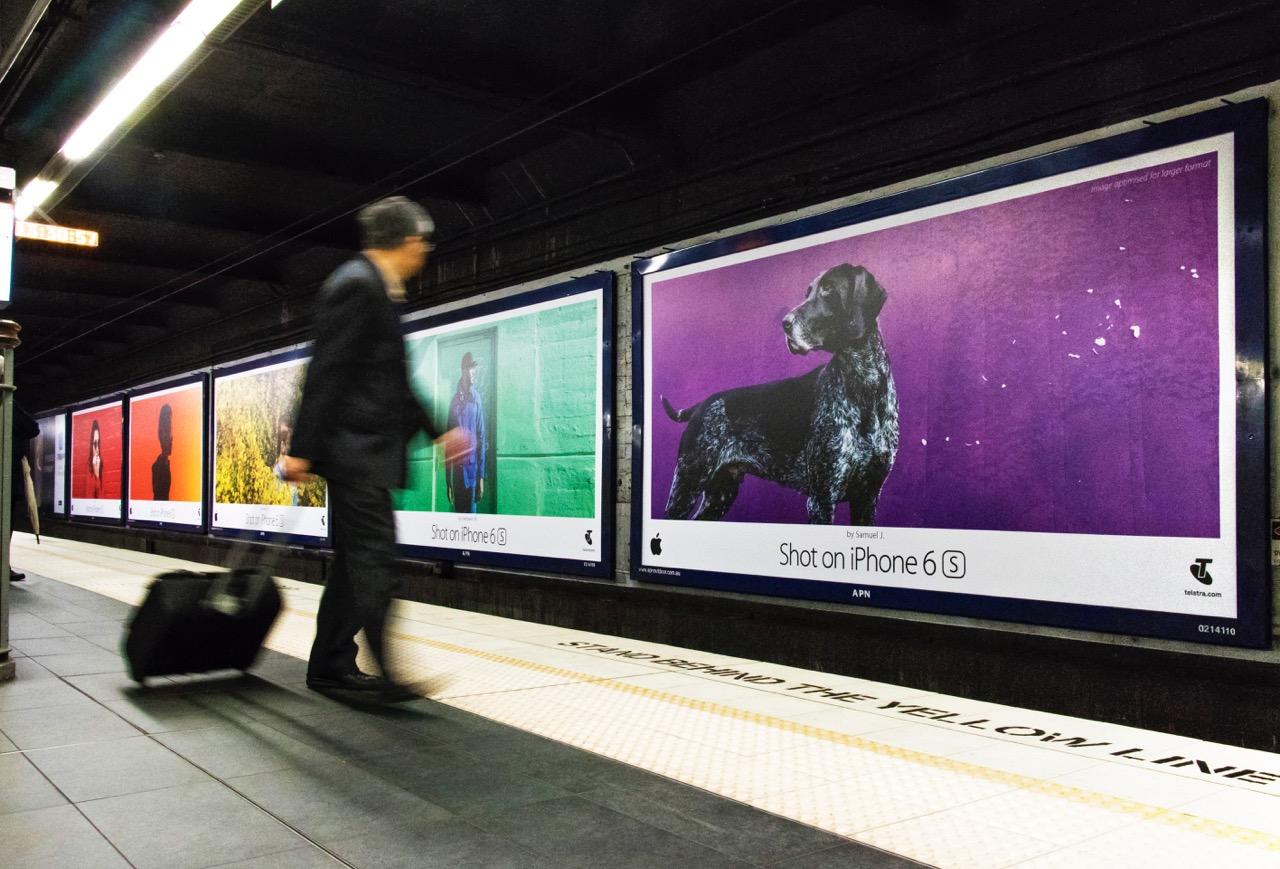 shot on iPhone sydney
