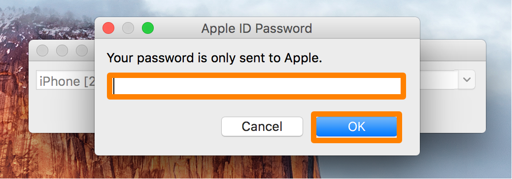 Apple ID Password Pangu