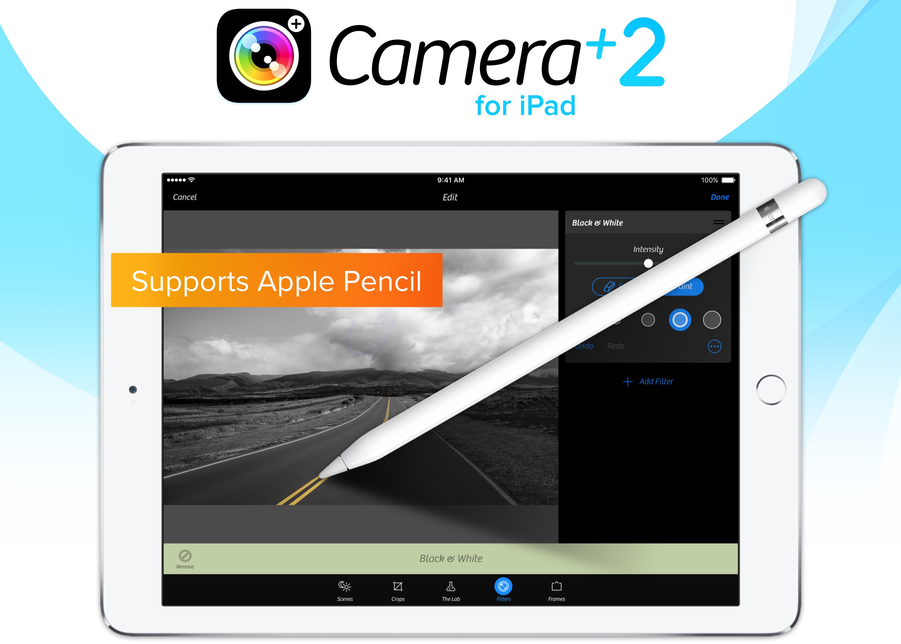 Camera+ 2.0 for iPad selective brushing teaser