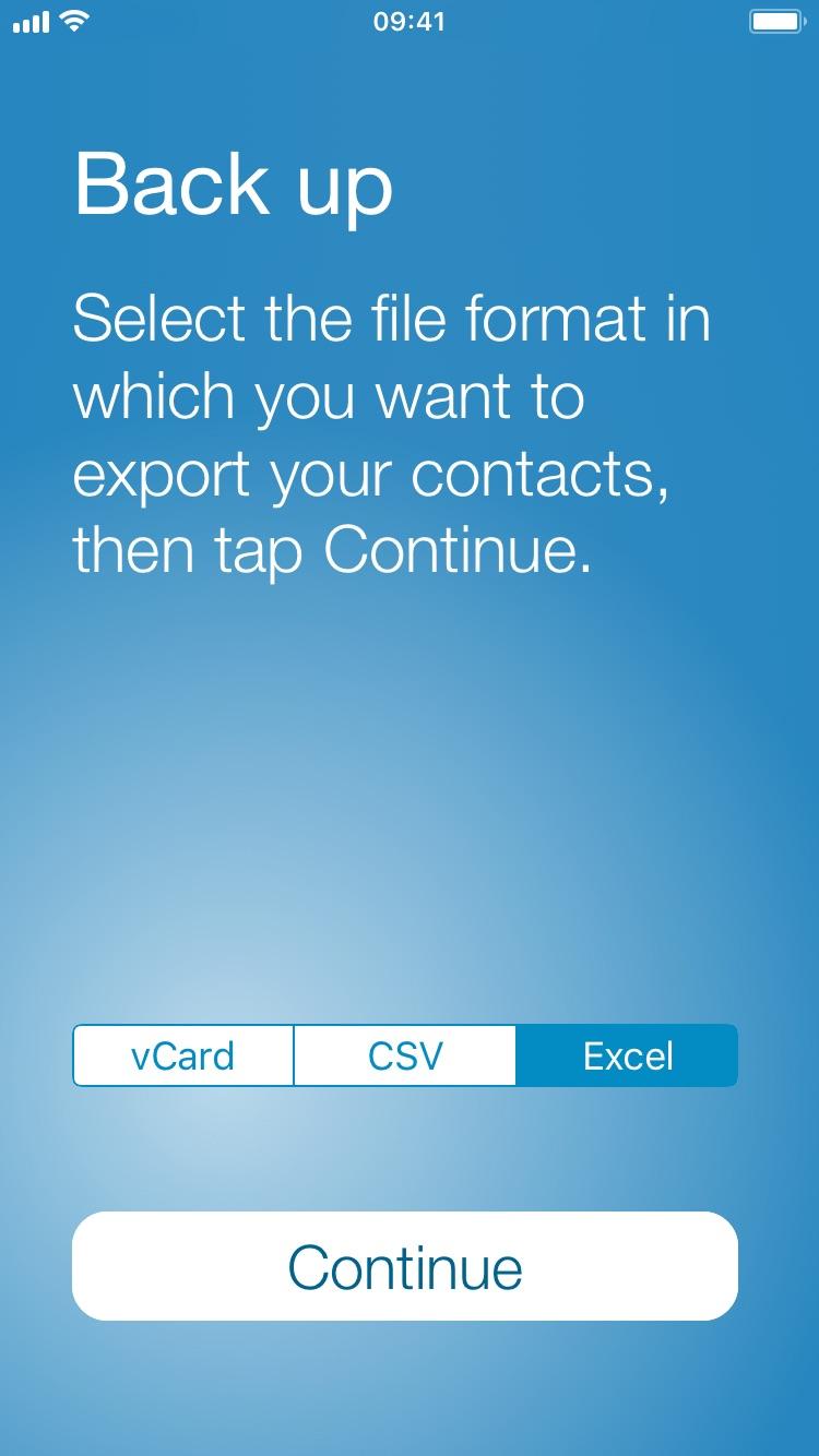 Seleccione el formato de archivo de Excel