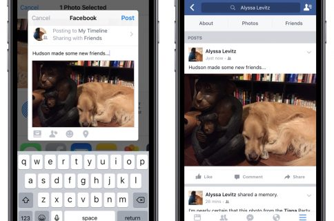 Facebook updates iOS SDK with native Share Dialog