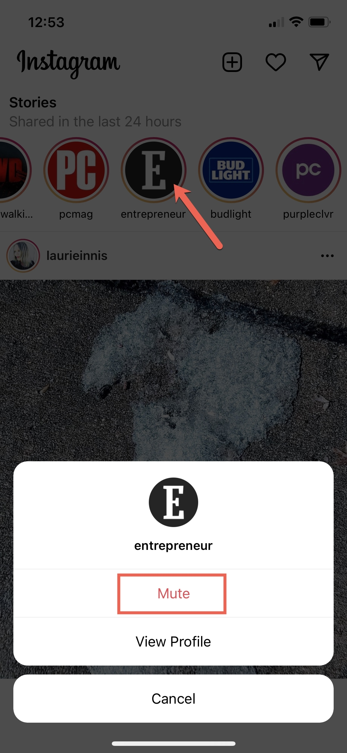 Instagram Hide Story with Mute