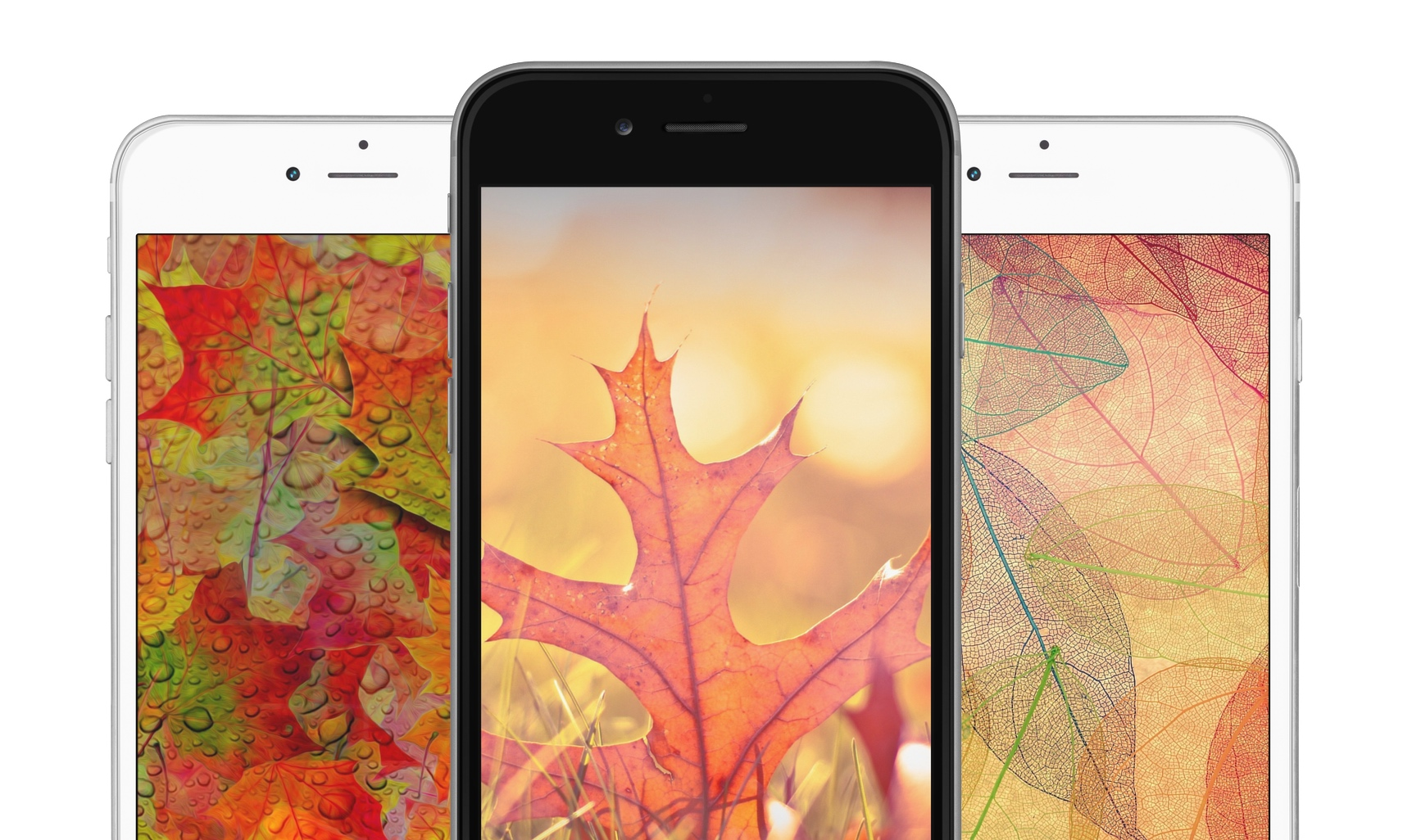 iDownloadBlog fall autumn wallpaper splash