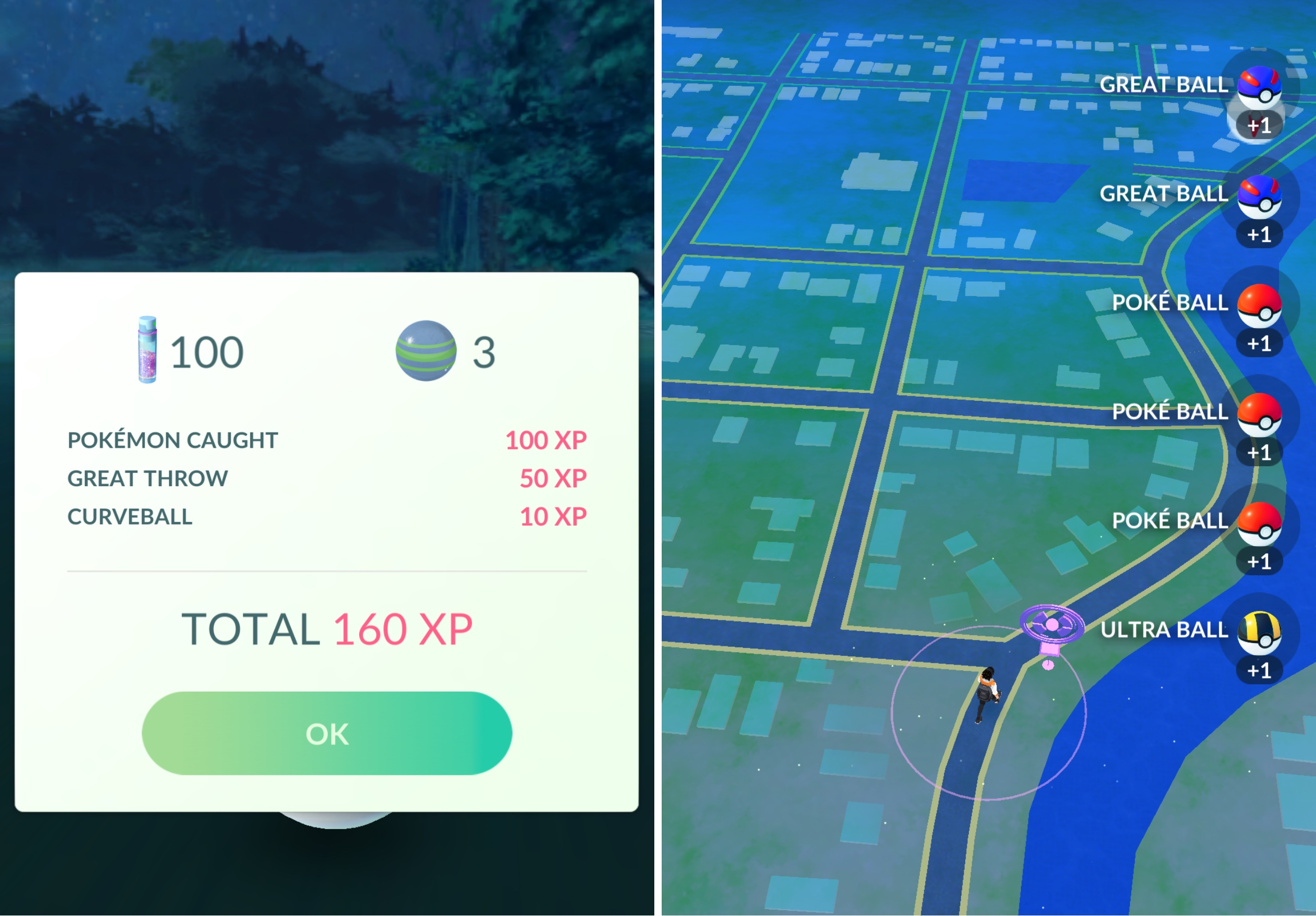 Pokego text changes