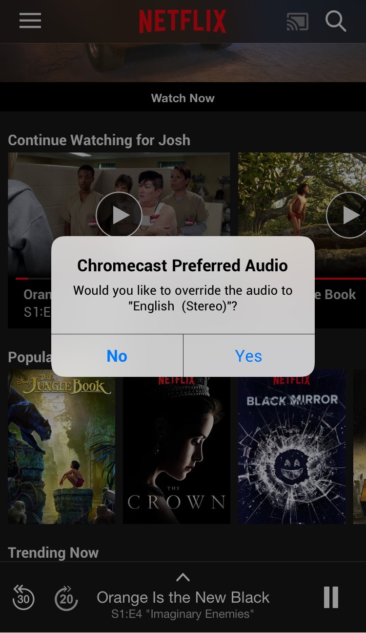 FlixEnhancer Chromcecast Preferred Audio