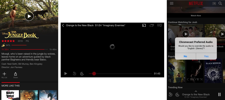 FlixEnhancer Improves Netflix for iOS