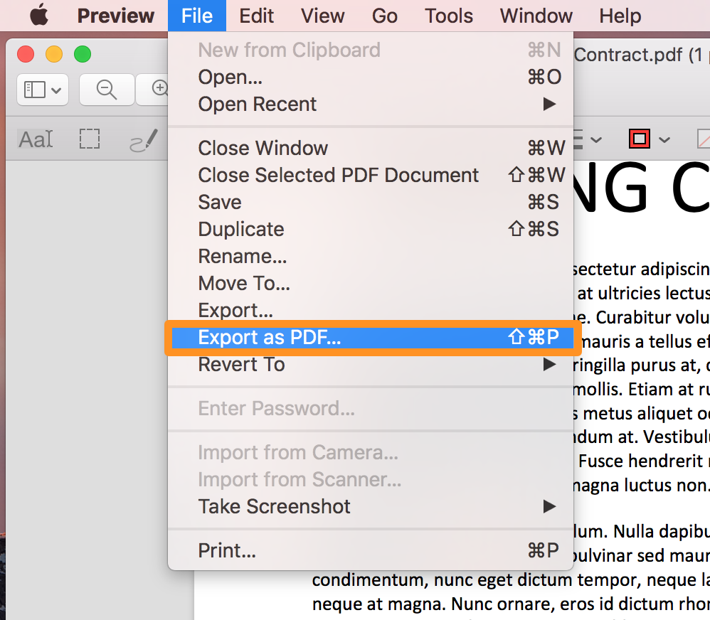 Preview Export as PDF