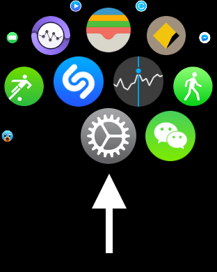 Settings app on Watch
