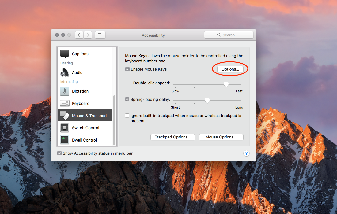 How to move and control the mouse pointer using your Mac