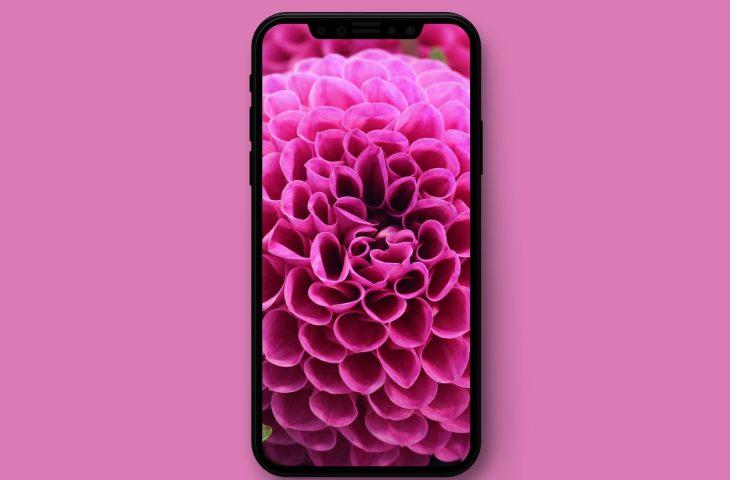 a11 iphone x