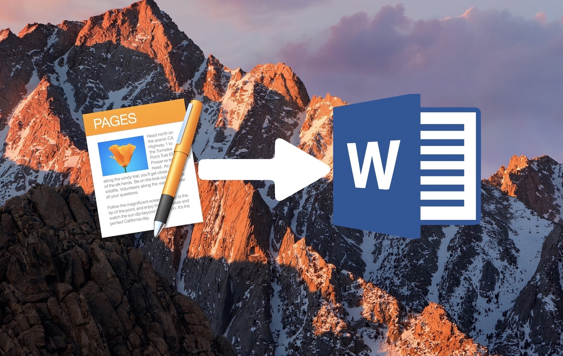 guardar páginas como documentos de Word