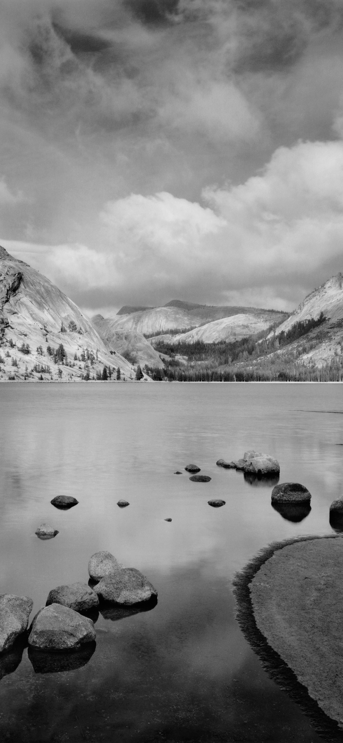 Water landscape in black and white