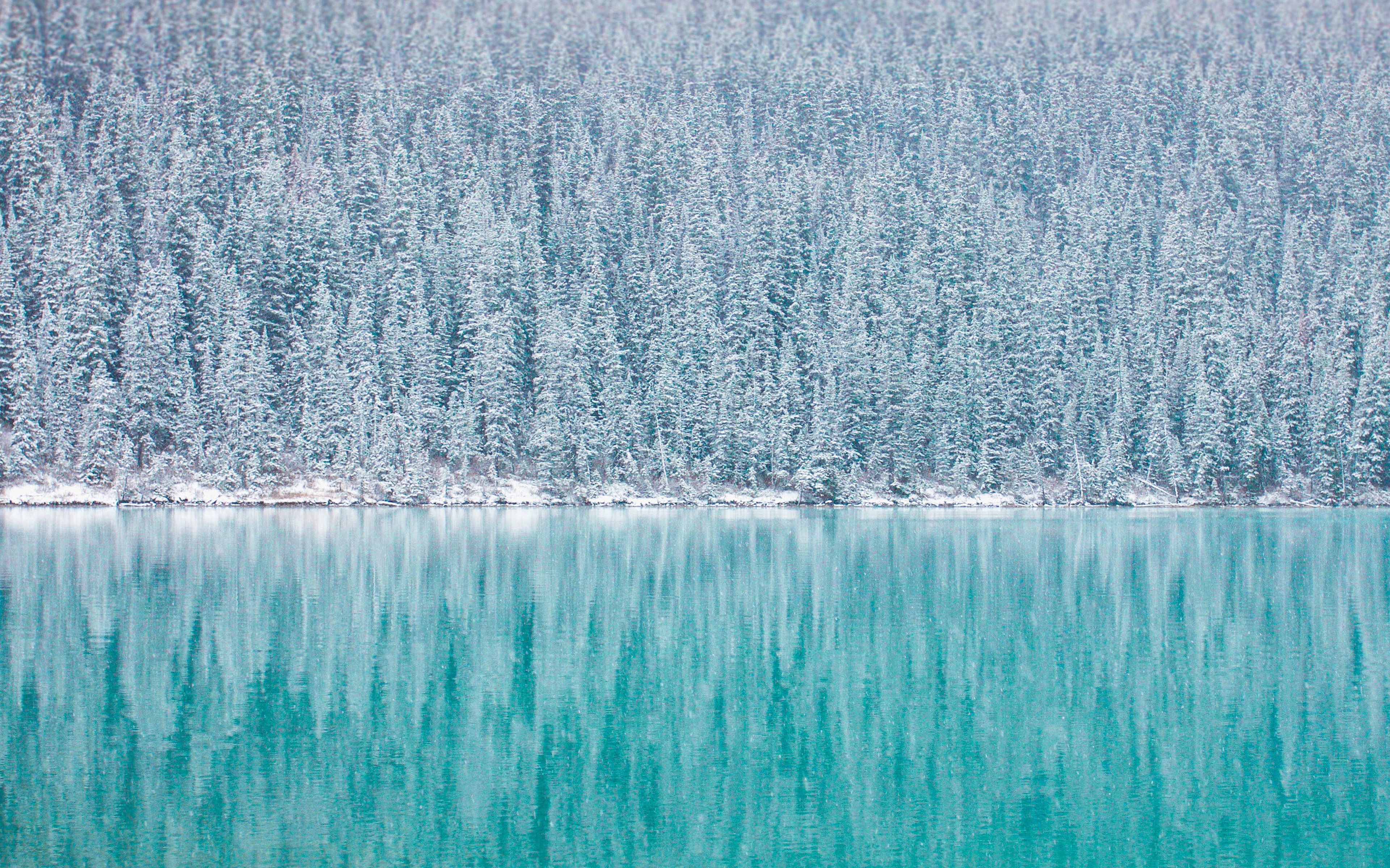 Free Wallpaper For Your Desktop And Ipad: Winter Wallpaper Pack For IPad, IPhone, And Desktop