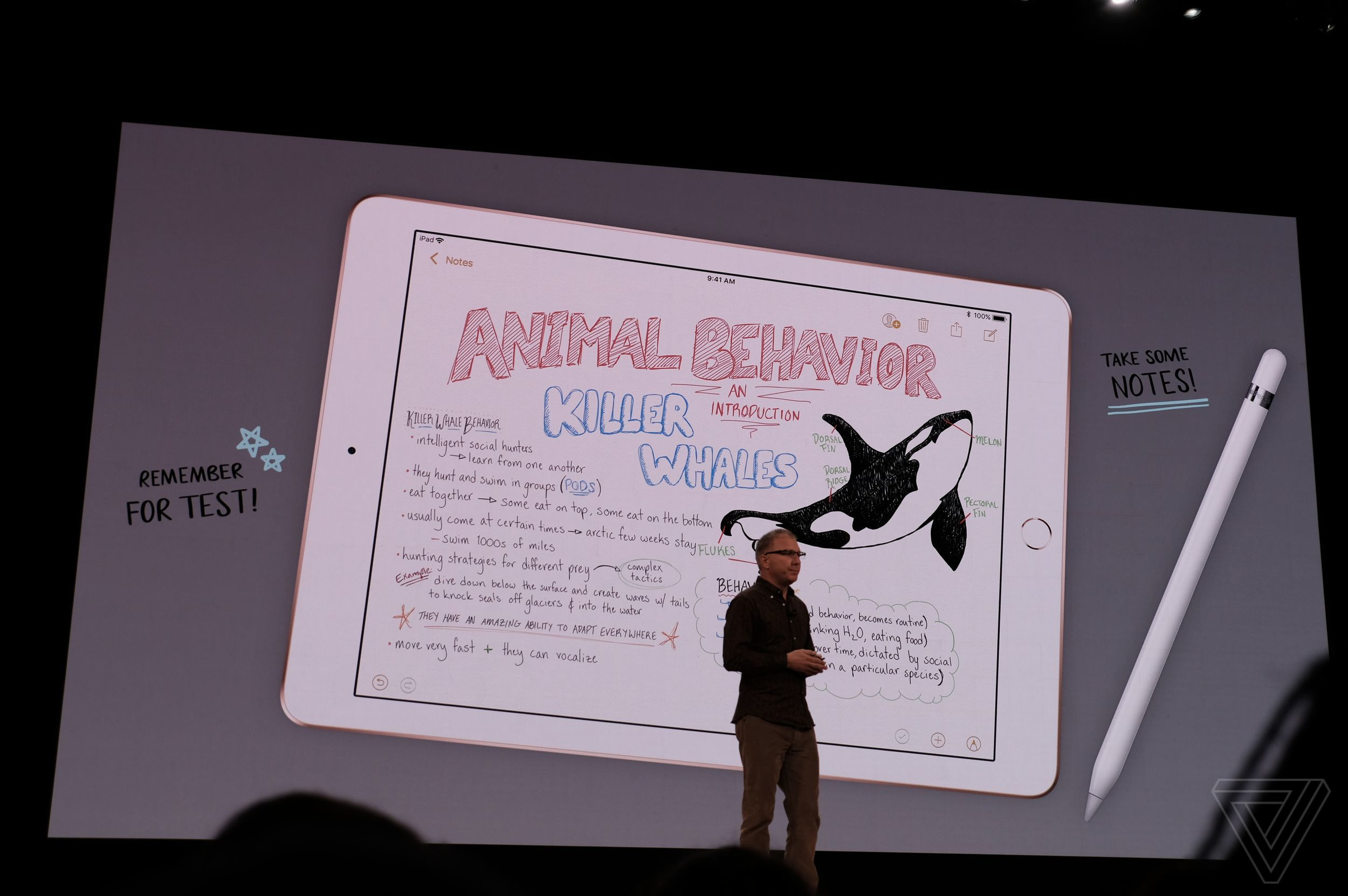 A slide from Apple's 2018 event with Tim Cook announcing a new budget iPad with Apple Pencil support