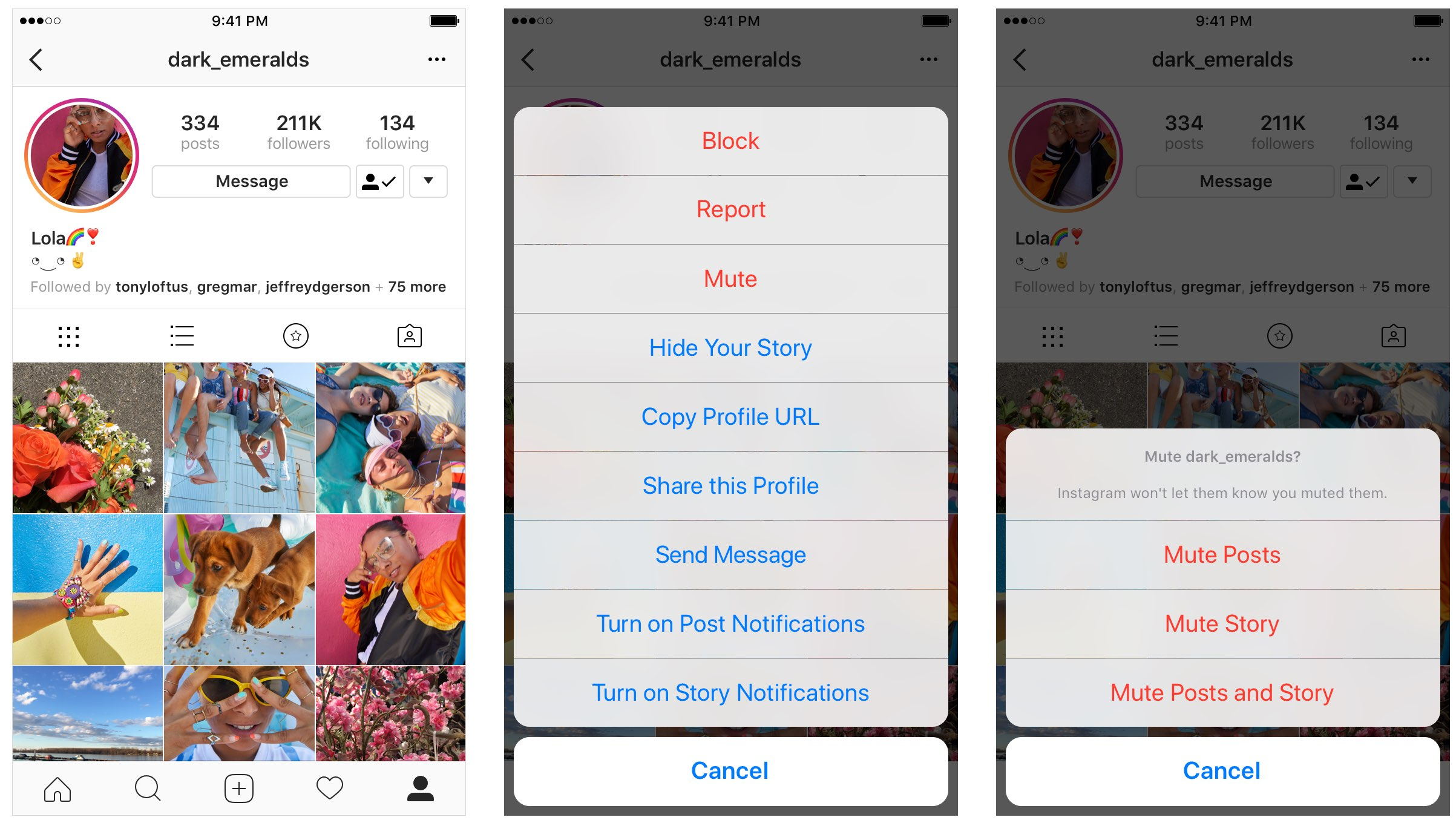 hide Instagram posts, Stories without unfollowing their accounts, right from their profile page or your Stories tray