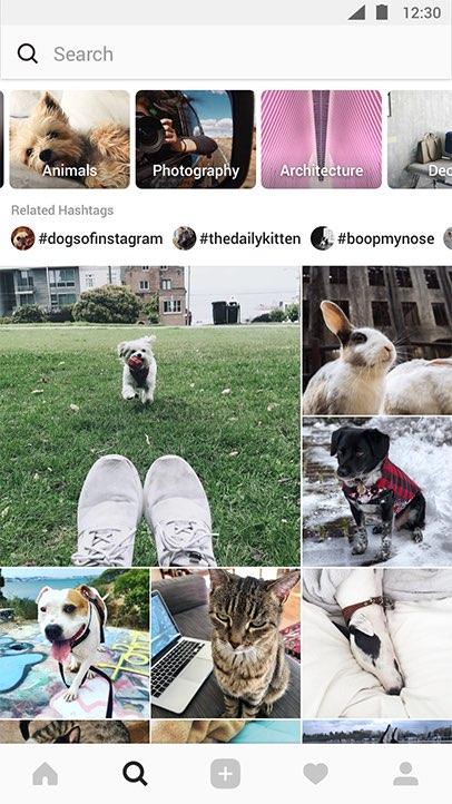 Los canales temáticos en Explore le ofrecen nuevas formas de descubrir sus intereses en Instagram.