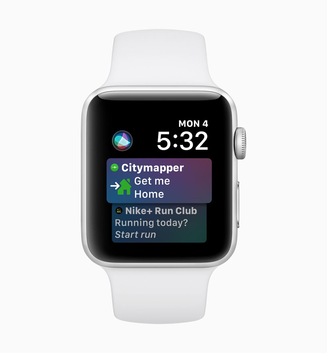 Apple Watch Siri face