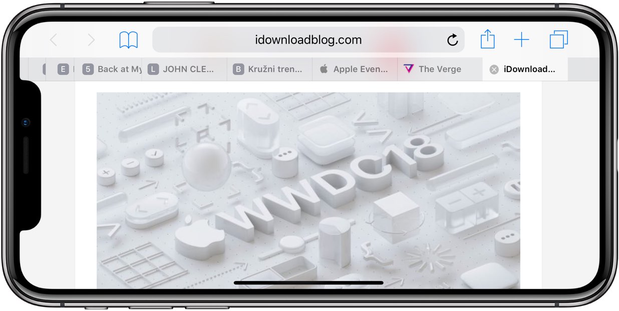 Safari favicons shown on an iPhone X in landscape mode