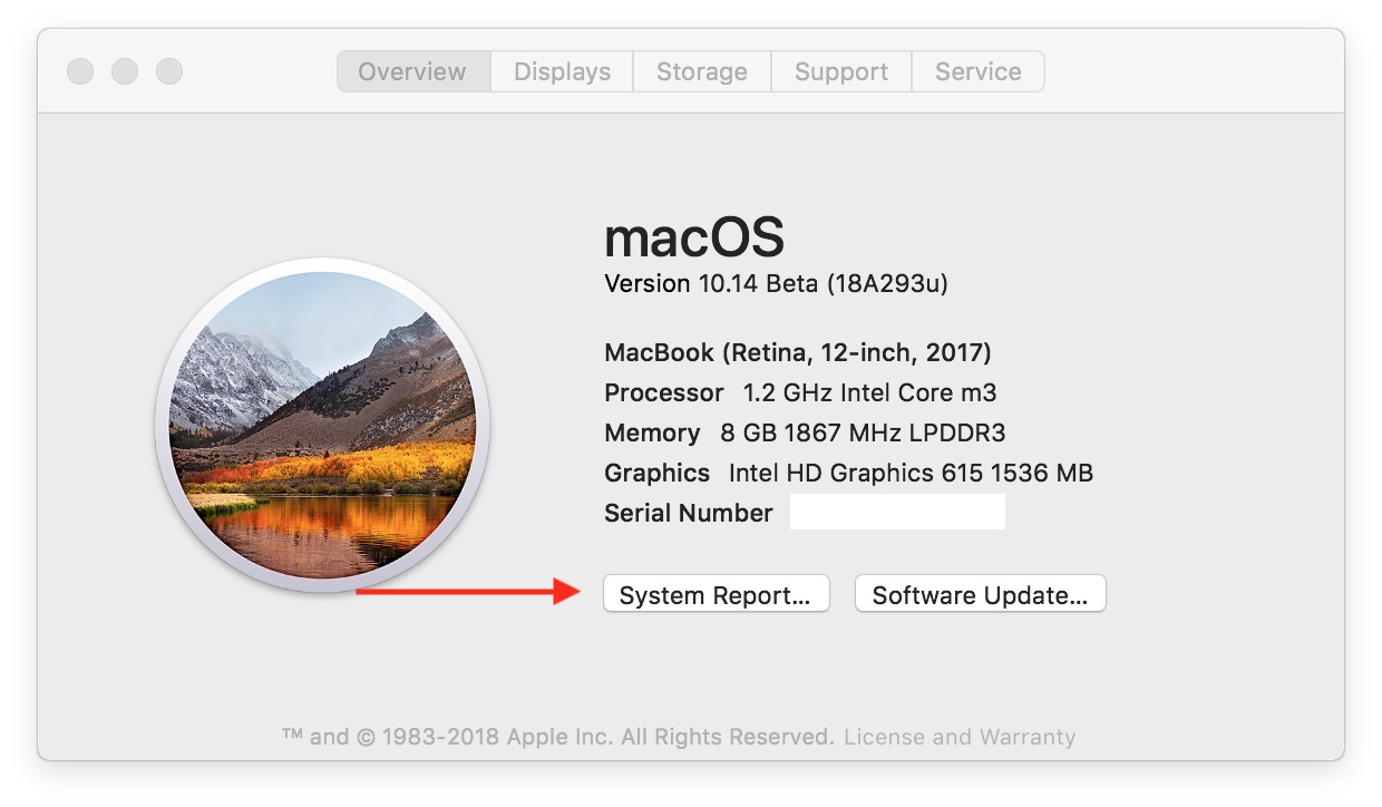 System Report macOS Mojave