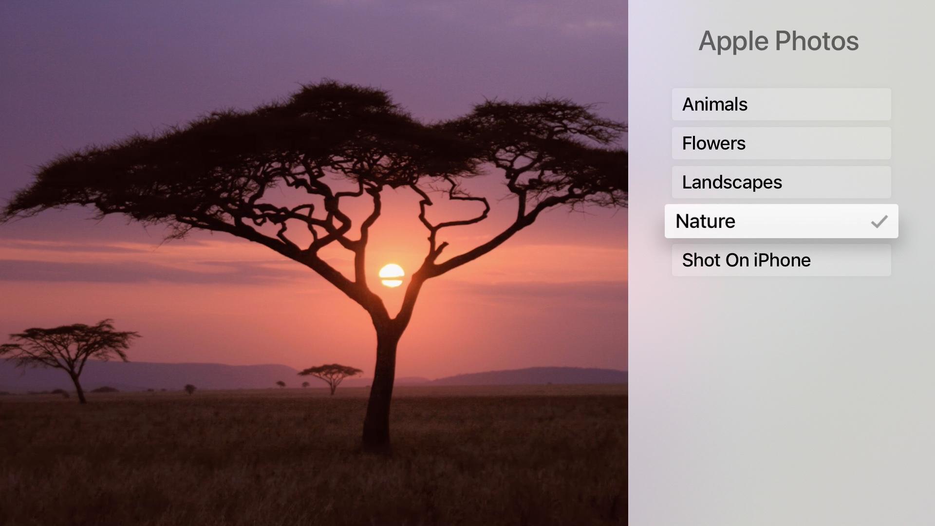 Apple TV Apple Photos Nature