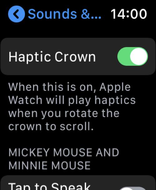 Disable Digital Crown Haptic Feedback Watch