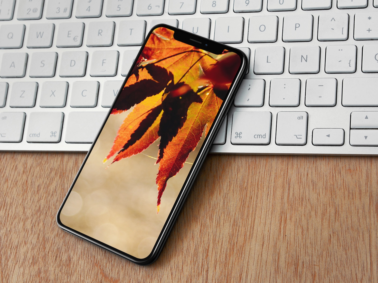 Autumn wallpapers for iPhone