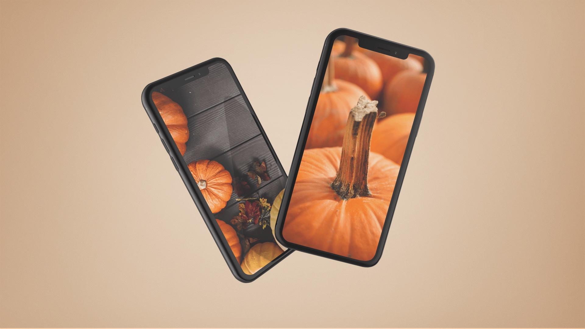 Orange pumpkin wallpapers for iPhone