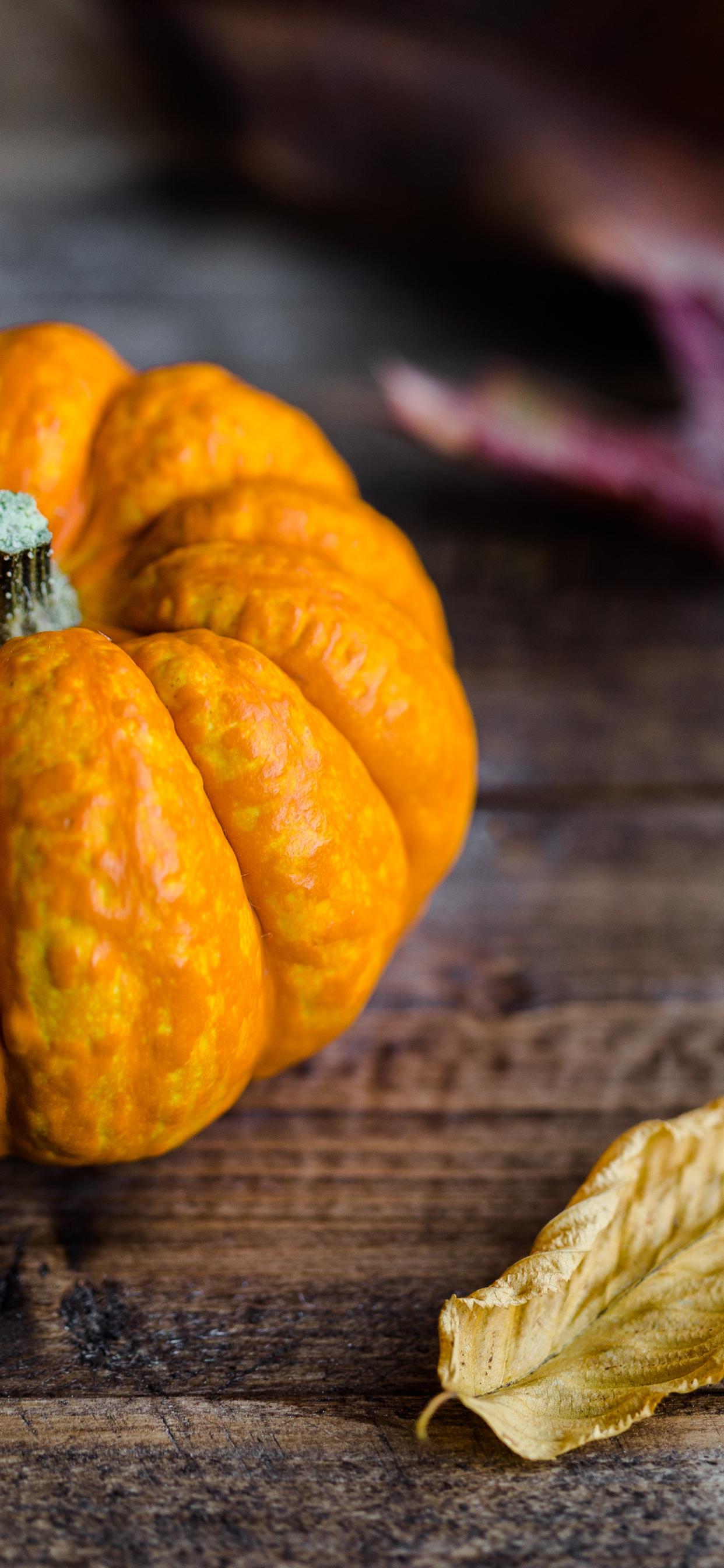 Pumpkin bokeh effect