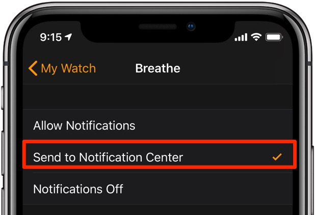 Apple Watch notifications - Deliver Quietly settings in the Watch app on iPhone