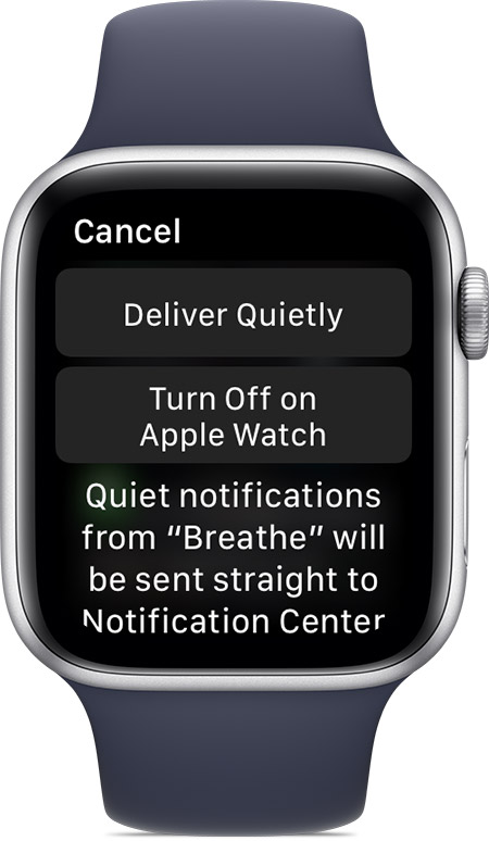 Apple Watch notifications - Deliver Quietly teaser