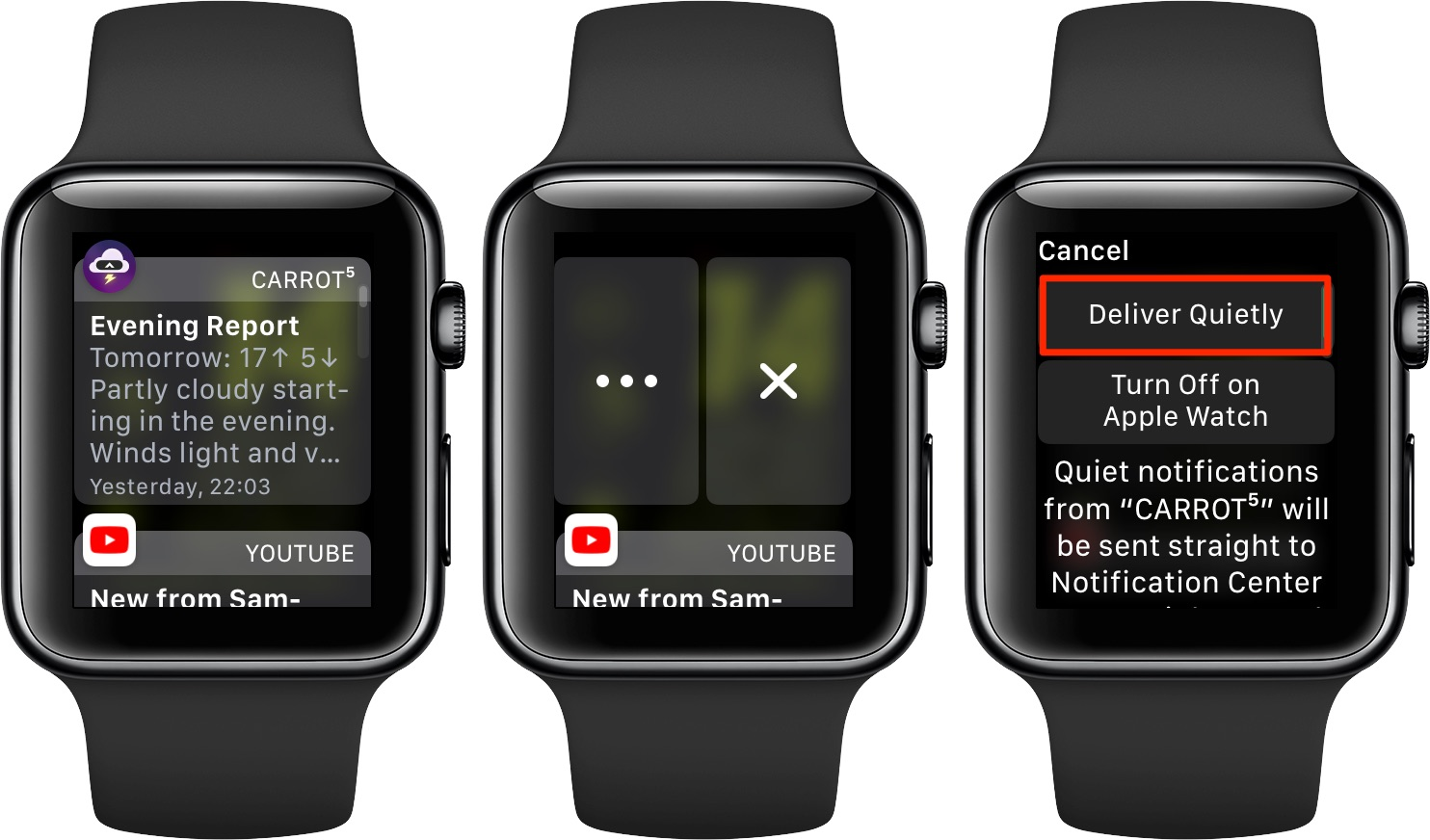 Apple Watch notifications - Deliver Quietly can also be accessed with Force Touch