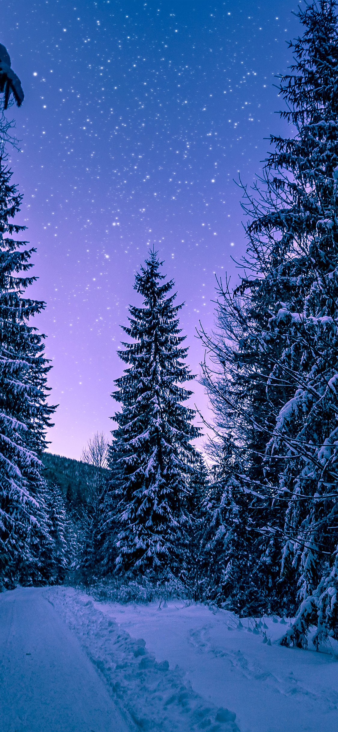 4k Winter Wallpapers For Iphone Ipad Or Macbook
