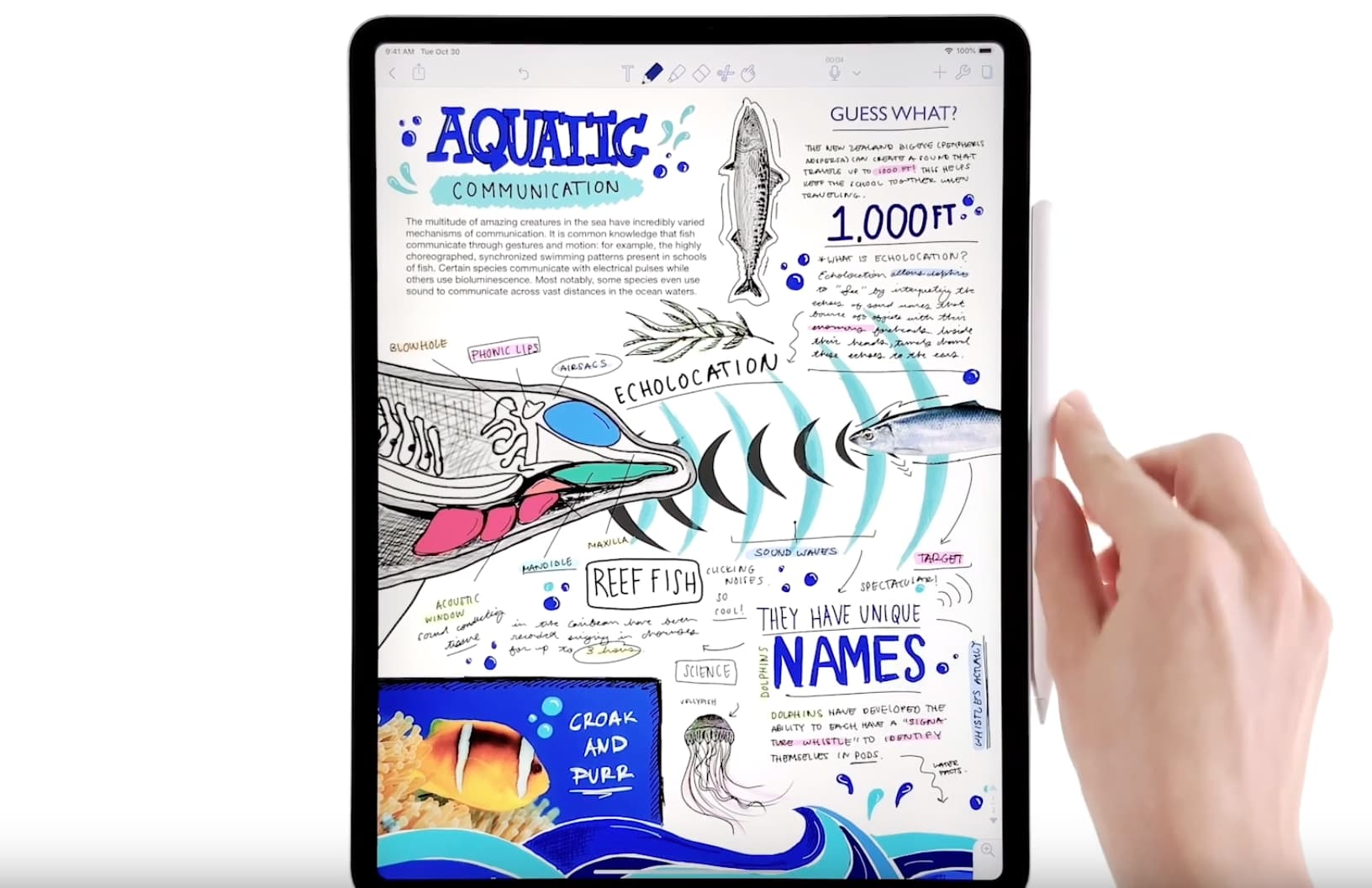 Apple posts new videos demonstrating things you can do with iPad Pro