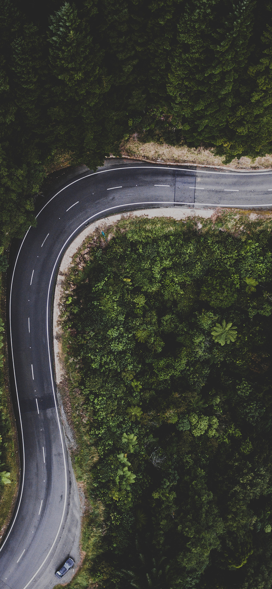 street-road-mountain-nature-iphone-X