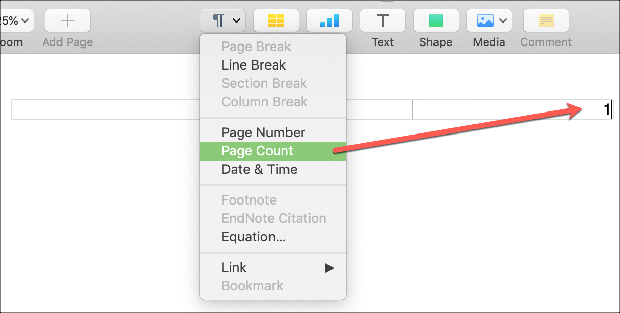 Insert Page Count Pages on Mac
