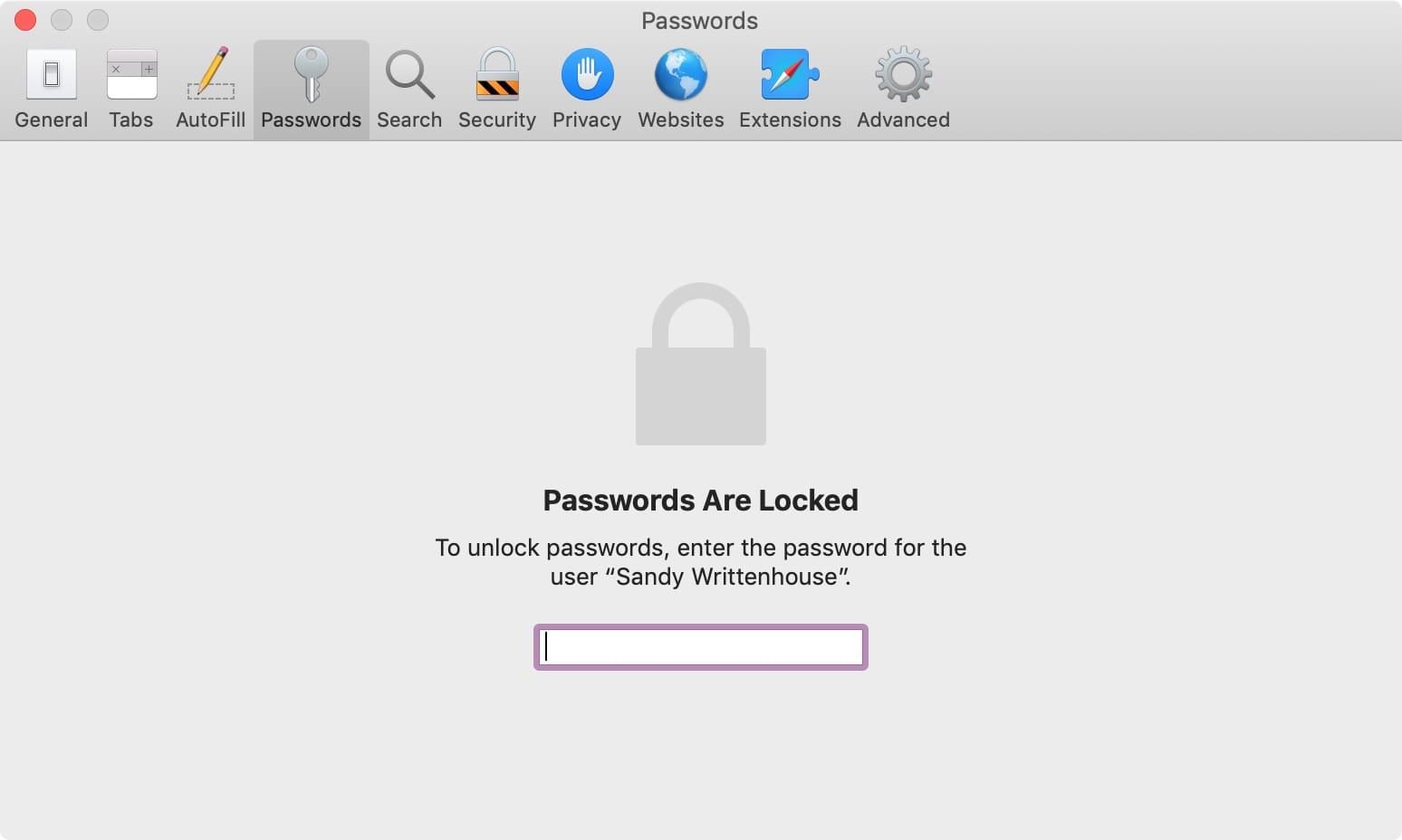 Enter Password on Mac to View Passwords