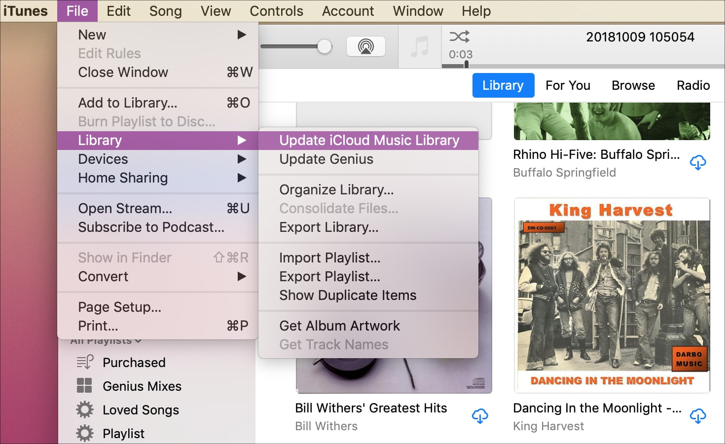 Update iCloud Music Library iTunes on Mac