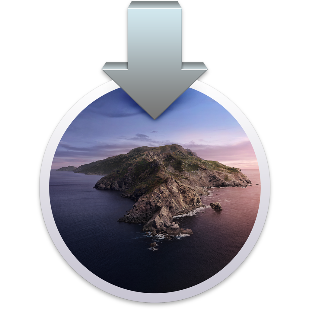 Catalina installer icon
