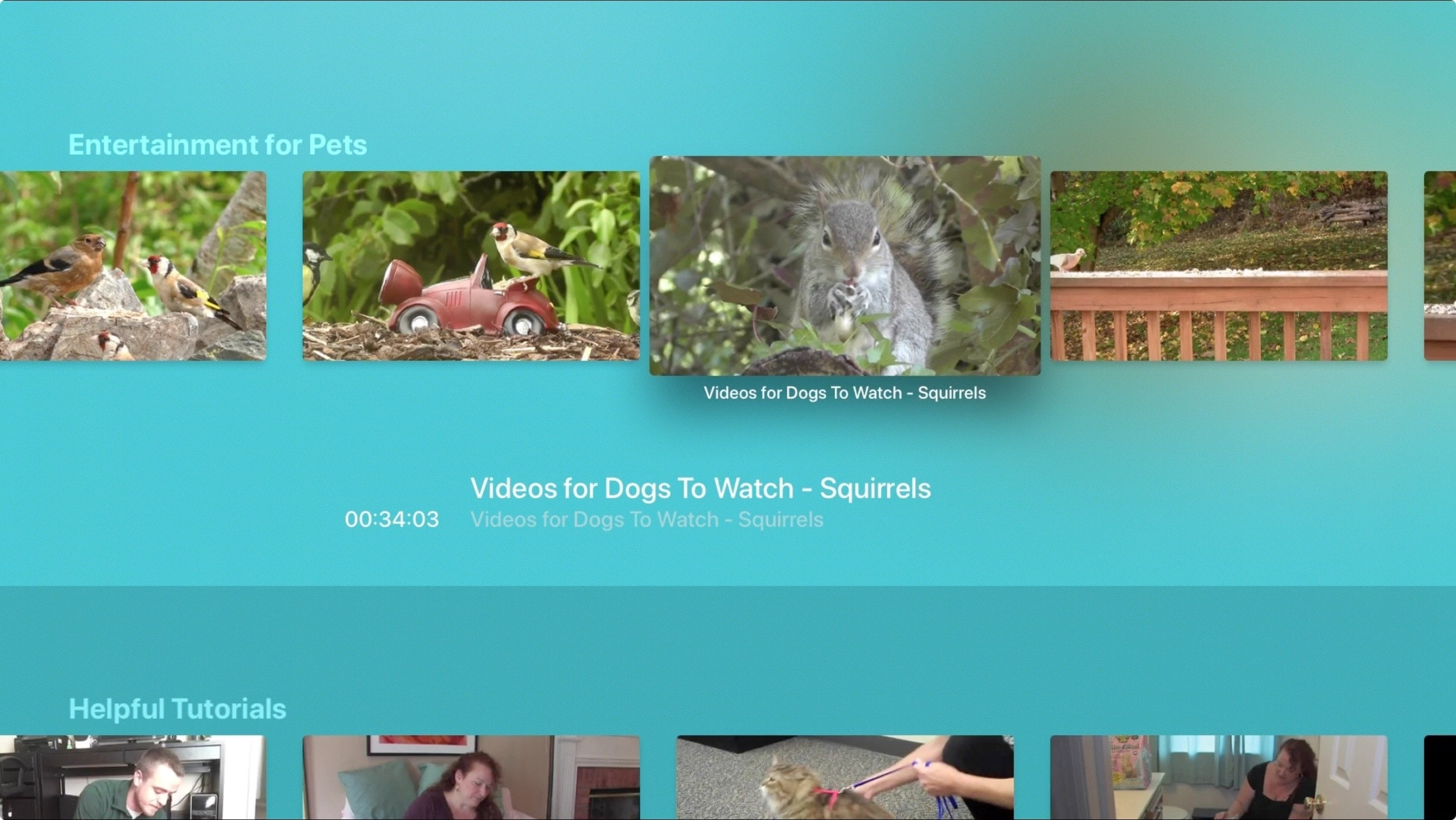 The Animal Channel Apple TV