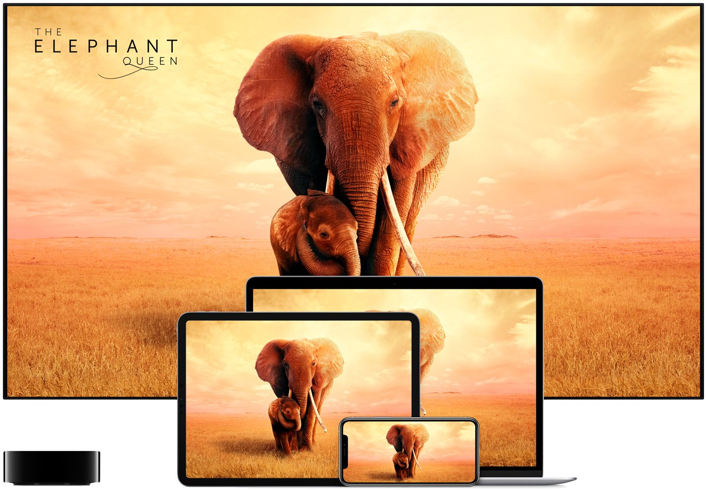 Free Apple TV+ trial